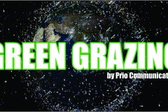 Green Grazing